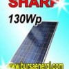 Modul Surya Sharp 130WP