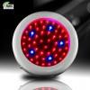 50W Mini UFO LED grow light