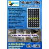 Solar Cell 100Wp Monocrystalline