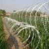Razor Wire / Kawat Duri Silet
