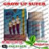 SUPLEMENT PENINGGI BADAN | GROW UP SUPER USA | Wisma Kecantikan.Com