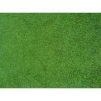 Artificial Grass ( Leisure Grass)
