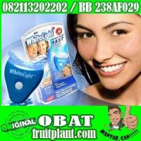 WHITELIGHT TEETH WHITENING [082113202202] Pemutih Gigi Aman - Original