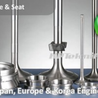 Engine Valve Spindle & Seat