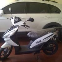 sepeda listrik TIGER 08 harga Rp.3.700.000 info 0823 3335 2646