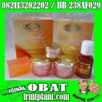 CREAM WALET SUPER GOLD PREMIUM [082113202202] Perawatan Kulit Wajah Herbal Alami