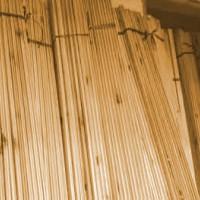 Kayu Pinus Matang Untuk DindingRuang Sauna
