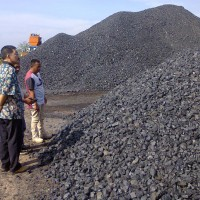 Batu Bara ( Indonesian Coal )