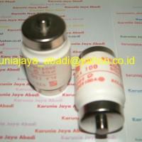 BLA 100 Fuse Fuji Electric , 100 Ampere , 600 Volt
