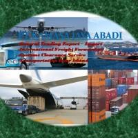 Custom Clearance Import Borongan