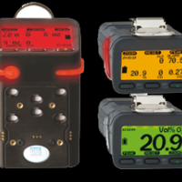 Portable MultiGas Detector G450