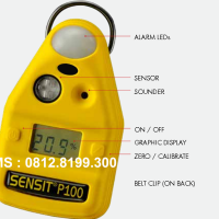 NO2 GAS DETECTOR || P100-N02, NITROGEN DIOXIDE DETECTION