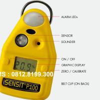 SO2 GAS DETECTOR || P100-SO2, SULFUR DIOXIDE GAS DETECTOR