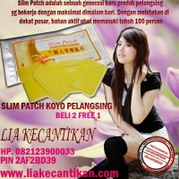 SLIM PATCH KOYO PELANGSING HUB 082123900033 PIN BB 2AF2BD39