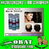 BLACK MAGIC HAIR TONIC KEMIRI CS 082113202202