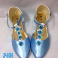 Cinderella flatshoes