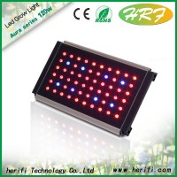 120w 240w 360w 480w 600w 1200w 2400w Led Grow Light Full Spectrum /Grow Led Light /cob led grow ligh