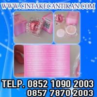 NENHONG PREMIUM KOREA 081291625333 menyempurnakan warna bibir anda