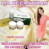 Cream Groosia SPF 30 Mencerahkan Kulit Wajah 082123900033 / 2AF2BD39
