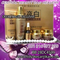 CREAM KOREA 5IN1 EXCLUSIVE [081316077399] Pemutih dan perawatan wajah herbal