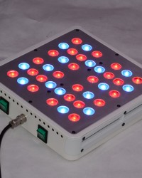 3 years warranty 200W apollo 4 led grow light hydroponics greenhouse apollo led grow lights