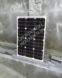 Vendor Solar Panel 50 Wp Monocrystalline