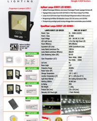 Lampu LED Sorot 30 Watt