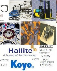 Hydraulic Seal, Seal Kit, oil seal, o-ring, WIPER, ROD SEAL, PISTON SEAL