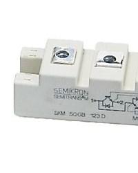 SEMIKRON IGBT MODULE SKM100GB063D