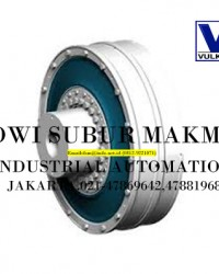 VULKAN FLEXIBLE COUPLINGS DS+