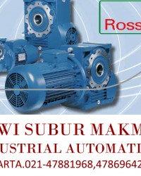 ROSSI Worm Gearmotors Cat A