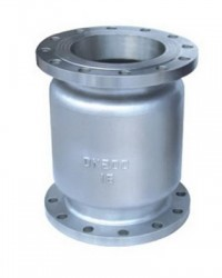 Stainless Steel Vertical Check Valves