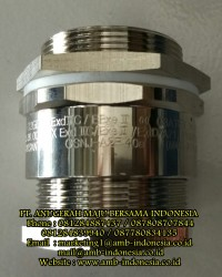 Cable Gland Non Armoured Explosion Proof Stainless Steel