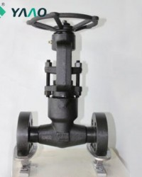 2500LB Integral Flanged Globe Valves