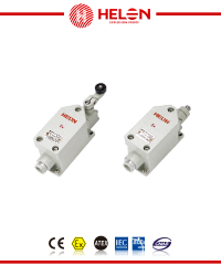 8077/1- Series explosion-proof travel switch (ⅡC, tD)