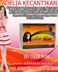 BSY COLOR SHINE PEWARNA RAMBUT 082123900033 / 290353AC