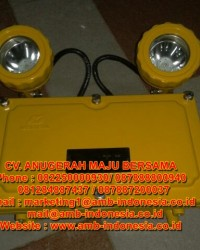 Lampu Emergency Explosion Proof Warom BAJ52-20 Double Head