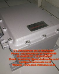 Junction Box Explosion Proof Panel Box Ex Proof Terminal Box
