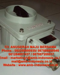 Rotary Switch ON/OFF Explosion Proof HRLM BHZ51 Ex-Proof Rotary Switch Jakarta