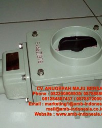 Rotary Switch Explosion Proof HRLM BHZ51 Rotary Switch ON/OFF Jakarta Indonesia
