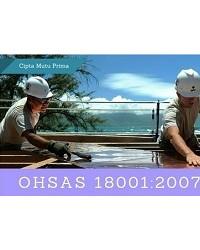 Konsultan OHSAS