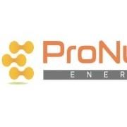 PT.PRONUSA ENERGI