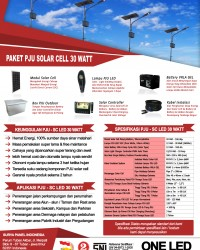 paket PJU solar cell 30 watt LED