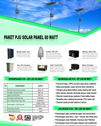 paket PJU solar panel 80 watt LED