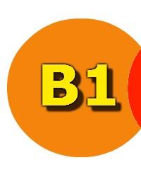 Jasa Pengurusan Import Perizinan B1,B2,B3