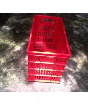 Keranjang Industri Krat Plastik Merk Rabbit Kode 5004