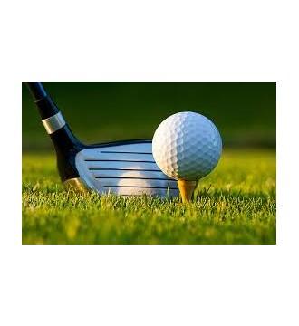 Jasa pengurusan Import Stik Golf dan Perlengkapan | PT.TATA INDAH SARANA