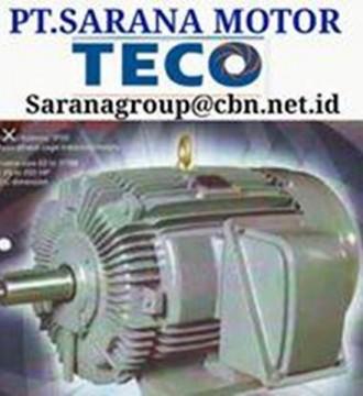 Jual INDUCTION AC TECO ELECTRIC AC MOTOR GEAR MOTOR PT SARANA MOTOR
