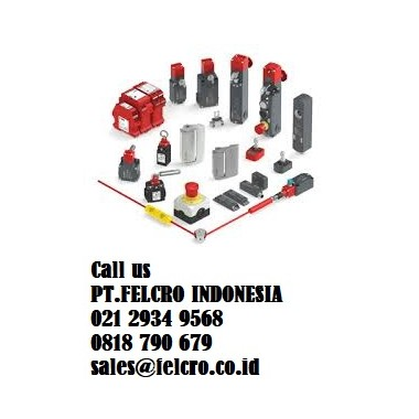 FD 535 PIZZATO ELETTRICA - Limit switch | PT.Felcro Indonesia | 0818790679