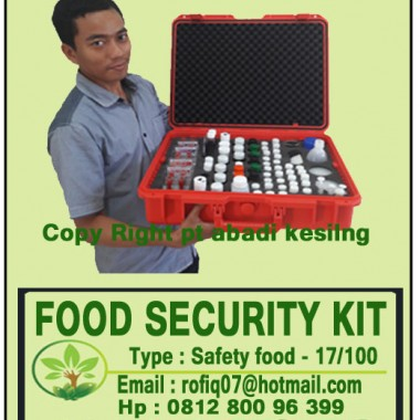 FOOD SECURITY KIT, type : Safety food - 17/100